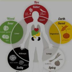 Книга Виолетты Копченковой - Мудрое питание по китайской системе У-СИН